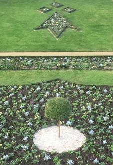 jardin dessin